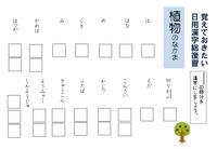 覚えておきたい 日用漢字総復習 (2)