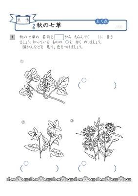 (生活)秋の七草