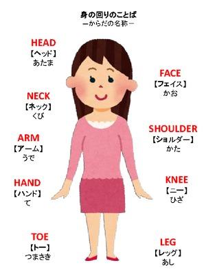 幼児教育 英語 身の回りの英語