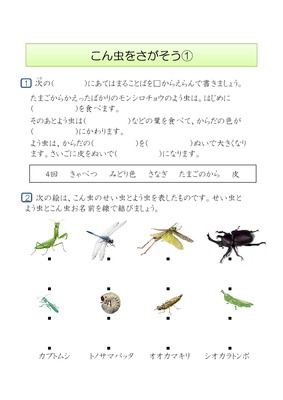 プリント カタカナ プリント 無料 : ... 無料学習プリント昆虫を探そう