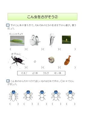 無料 カタカナ ドリル 無料 : ドリルズ | 小学3年生 ・理科 の ...