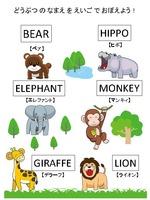 英語で動物の名前を覚えよう